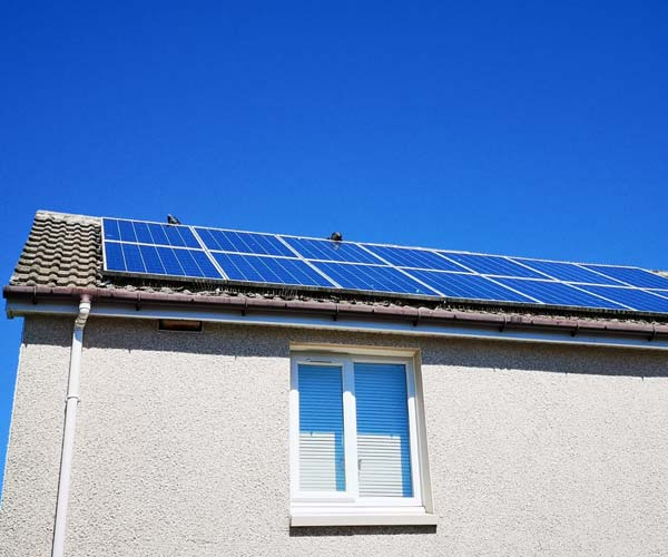 bird-proofing-solar-panels-Hamilton