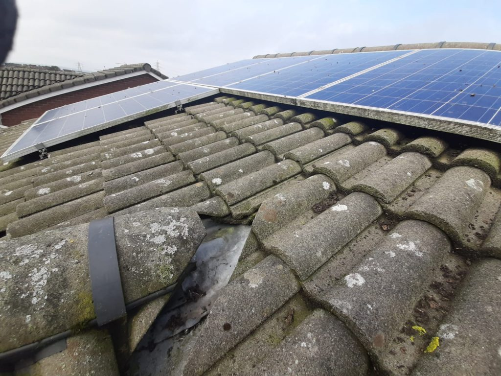 solar bird proofing Saltcoats, Ayrshire