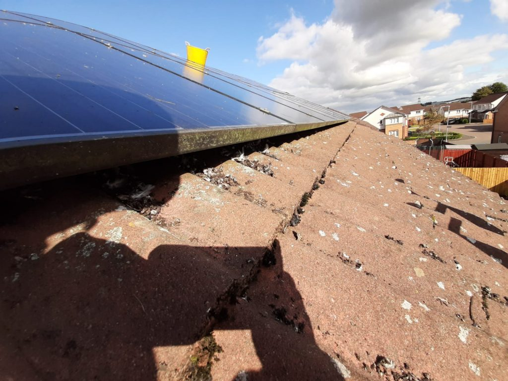 cleaning solar panels Scotland