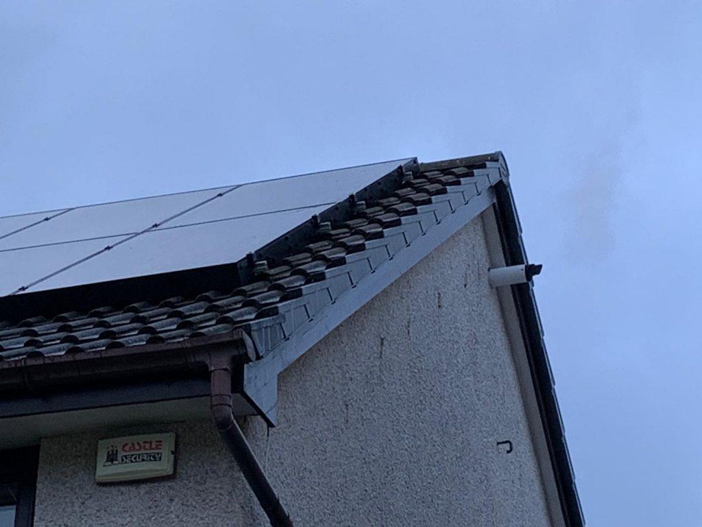 stop pigeons nesting under solar panels Edinburgh, Scotland
